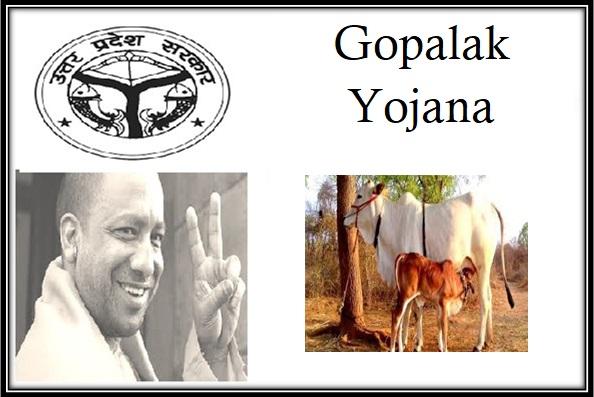 Gopalak Yojana Loan Apply in Uttar Pradesh