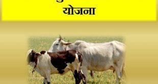 Haryana Pashu Kisan Credit Card Scheme