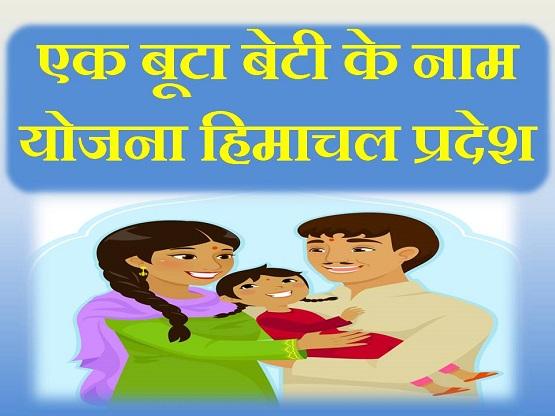 Ek Buta Beti ke Naam Scheme Himachal Pradesh in Hindi