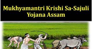 Mukhyamantri Krishi Sa-Sajuli Yojana in Assam